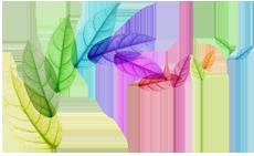 Wendy Flores logo