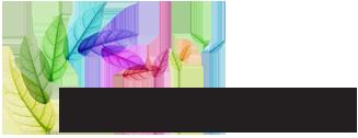 wendy-flores-logo